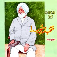 Tarke Mein Tenu Dhoondan Iqbal Baho