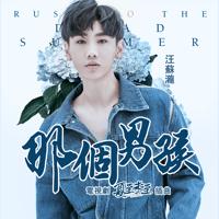 那個男孩 (電視劇《夏至未至》插曲) Silence Wang MP3