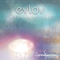 Free Download Evlov Wellness, Music to Recover From an Illness Mp3