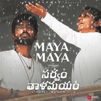 Maya Maya (Telugu)