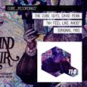 Free Download The Cube Guys & David Penn Ah Feel Like Ahcid Mp3