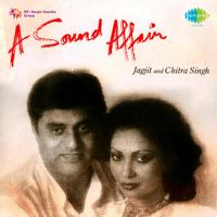 Koi Samjhega Kya Raz-E-Gulshan Jagjit Singh & Chitra Singh
