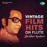 Bol Re Papi Hara (Instrumental) Shridhar Kenkare MP3