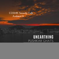 Vishvam - The Virat-Purusha Shankra & COSMK