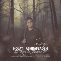 In Roozha Bedoone To Hojat Ashrafzadeh MP3