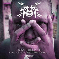 Cyah Help It (feat. Ms. Dynamite & Bunji Garlin) Jus Now