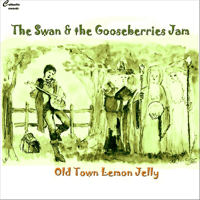 So Long The Swan & the Gooseberries Jam