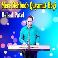 Tere Jaisa Yaar Kahan Belaal Patel MP3