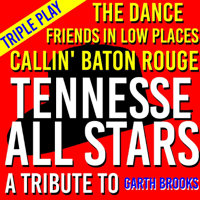 Friends in Low Places The Tennessee All Stars song