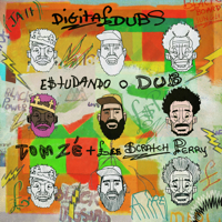 Estudando o Dub (feat. Tom Zé & Lee