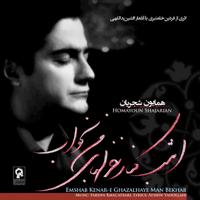 Havaa Homayoun Shajarian & Fardin Khal'atbari MP3