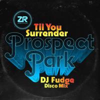 Till You Surrender (DJ Fudge Disco Mix) Prospect Park