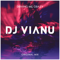 Driving Me Crazy Dj Vianu MP3