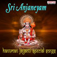 Sri Hanuman Dandakam Parthasarathi MP3