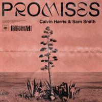 Calvin Harris, Sam Smith Promises