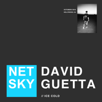 Ice Cold Netsky & David Guetta