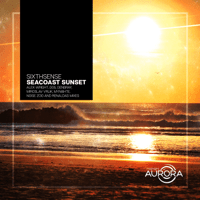 Seacoast Sunset (Noise Zoo Remix) SixthSense song