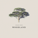 Free Download Evelyn Stein Woodland Mp3