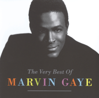 I Heard It Through The Grapevine (Single Version) Marvin Gaye