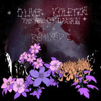 Through the Darkness (Township Rebellion Remix) Oliver Koletzki MP3