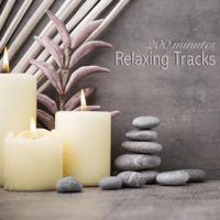 Visualization Meditation Spa Music Relaxation Meditation