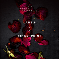 Fingerprint Lane 8 MP3