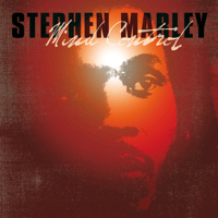 You're Gonna Leave Stephen Marley MP3