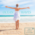 Free Download Life Sounds Nature Amazing Sound of Surf With Big Waves (White Noise) For Concentration, Deep Sleep Mp3