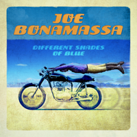 Different Shades of Blue Joe Bonamassa