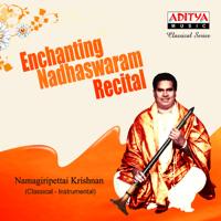 Sri Maha Ganapathi - Abhogi - Khanda Eka Namagiripettai Krishnan song