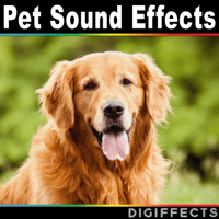 Siberian Husky Dog Barking and Howling Digiffects Sound Effects Library MP3