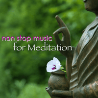 Vipassana Yoga Music Guru MP3