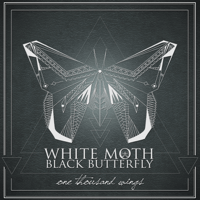 Midnight Rivers White Moth Black Butterfly