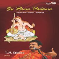 Banduriti - Hamsanadam - Adi T. M. Krishna