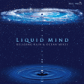 Free Download Liquid Mind Soft Focus Ocean Mix Mp3