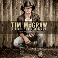 Meanwhile Back At Mama's (feat. Faith Hill) Tim McGraw MP3