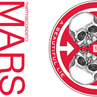 A Beautiful Lie Thirty Seconds to Mars