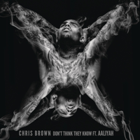 Don't Think They Know (feat. Aaliyah) Chris Brown
