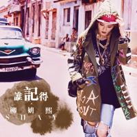 誰記得 (國) Shay Liu MP3
