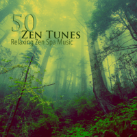 Meditation Relaxation Relaxing Minfulness Meditation Relaxation Master MP3
