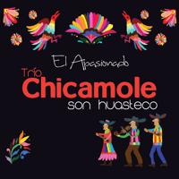 Xochipitzahuatl Trio Chicamole Son Huasteco