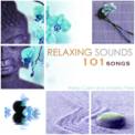 Free Download Relaxing Mindfulness Meditation Relaxation Maestro Relaxing Sounds 101 Mp3