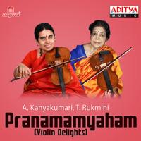 Eppadi Paadinaro - Abheri - Adi A. Kanyakumari