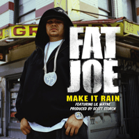 Make It Rain (feat. Lil Wayne) Fat Joe song
