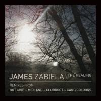 The Healing James Zabiela MP3