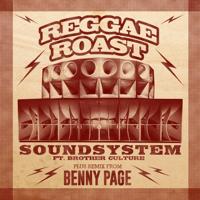 Soundsystem (feat. Brother Culture) Reggae Roast