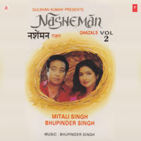 Aa Jaye Kisi Din Tu Mitali Singh MP3