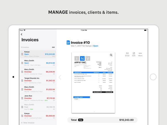 Tiny Invoice on the App Store - product invoice