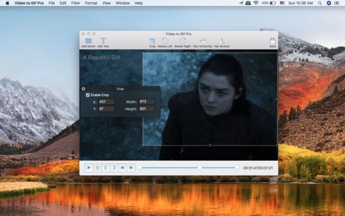 2_Video_to_GIF_Pro.jpg