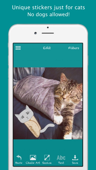 Download Cat Chalk App for PC Windows and Mac - Android for PC Download